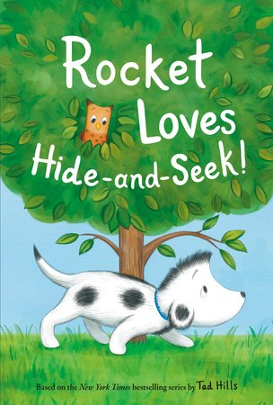 Rocket Loves Hide-and-Seek!