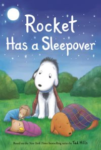 Book cover for Rocket Has a Sleepover