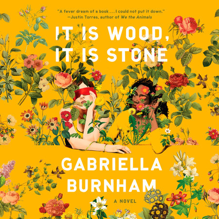 It Is Wood, It Is Stone book cover