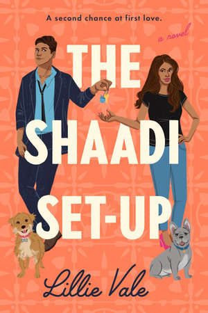 Cover image for The Shaadi Set-Up