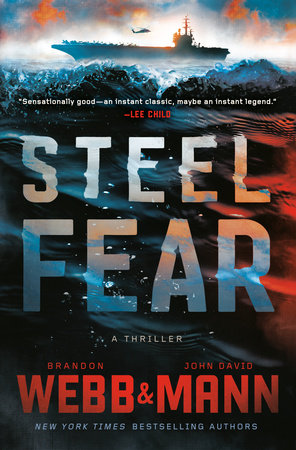 Cover image for Steel Fear
