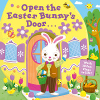 Book cover for Open the Easter Bunny\'s Door