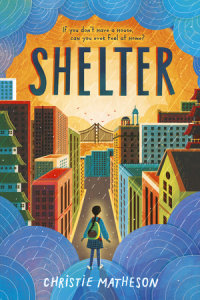 Cover of Shelter cover