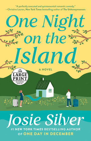 One Night on the Island book cover