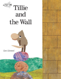 Cover of Tillie and the Wall cover