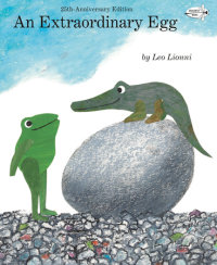 Book cover for An Extraordinary Egg