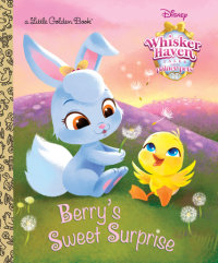 Book cover for Berry\'s Sweet Surprise (Disney Palace Pets: Whisker Haven Tales)