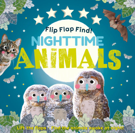 Flip Flap Find! Nighttime Animals