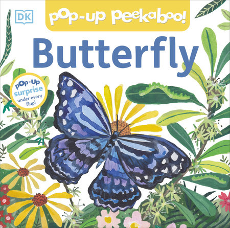 Pop Up Peekaboo Butterfly