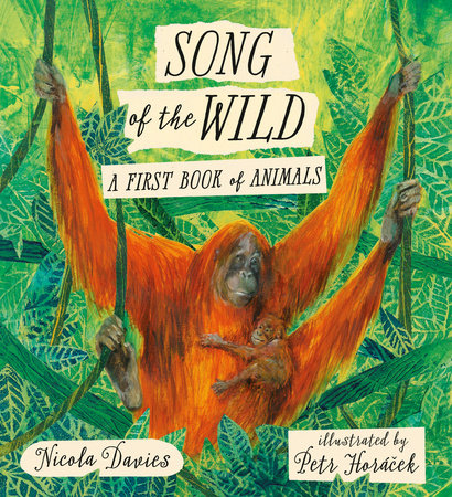 Song of the Wild: A First Book of Animals