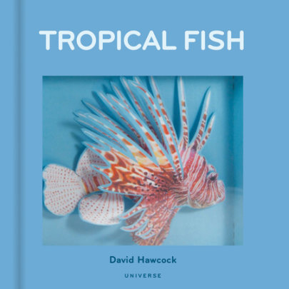 Tropical Fish - Written by David Hawcock