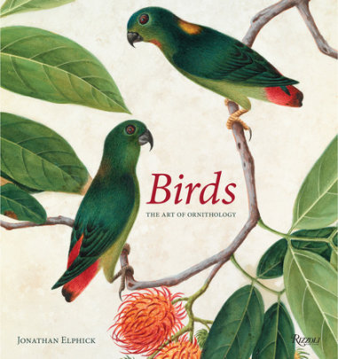 Birds - Written by Jonathan Elphick