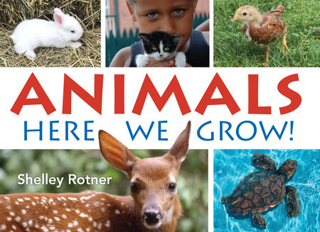 Animals: Here We Grow