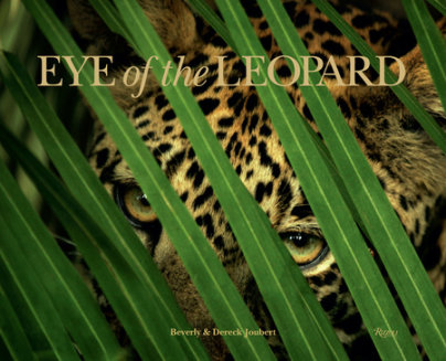 Eye of the Leopard - Written by Dereck Joubert, Photographed by Beverly Joubert, Foreword by Lieutenant General Ian Khama