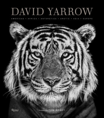 David Yarrow Photography - Written by David Yarrow, Foreword by Tom Brady