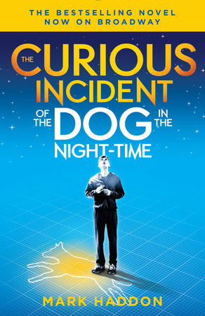 Novel curious incident dog night time simply story young