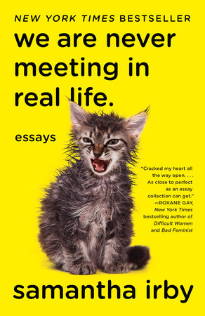 Cover image for We Are Never Meeting in Real Life.