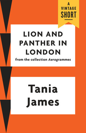 Lion and Panther in London