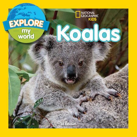 Explore My World Koalas