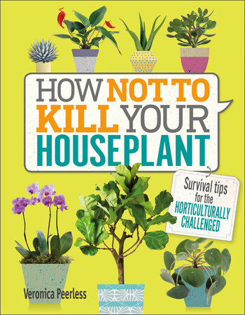 How Not to Kill Your Houseplant