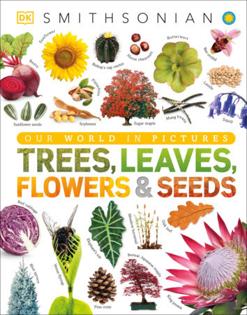 Trees, Leaves, Flowers, and Seeds