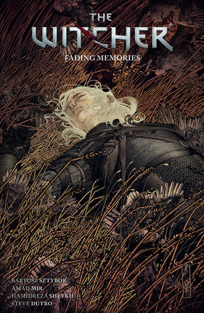 The Witcher Volume 5: Fading Memories