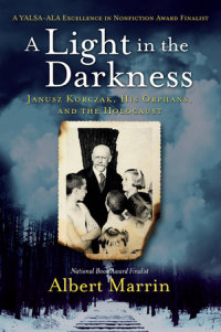 Book cover for A Light in the Darkness