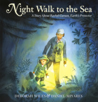 Book cover for Night Walk to the Sea
