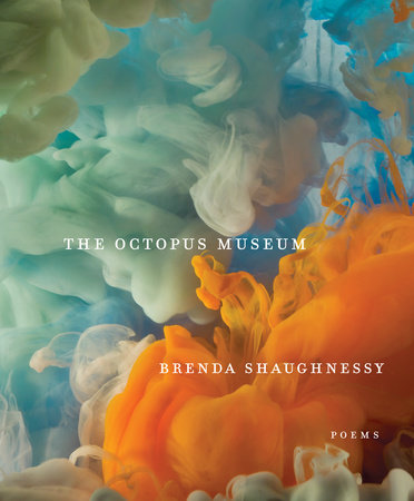 Cover image for The Octopus Museum