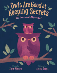 Cover of Owls are Good at Keeping Secrets cover