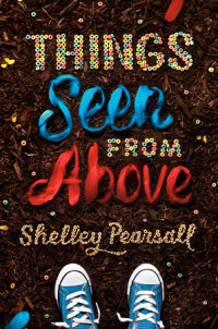 Cover of Things Seen from Above cover