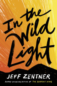 Cover of In the Wild Light cover