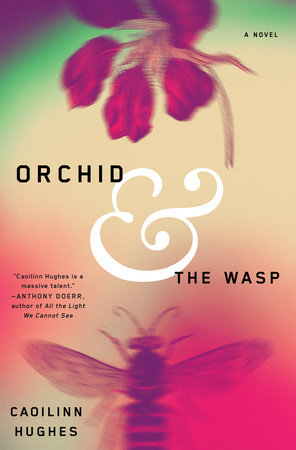 Orchid and the Wasp book cover