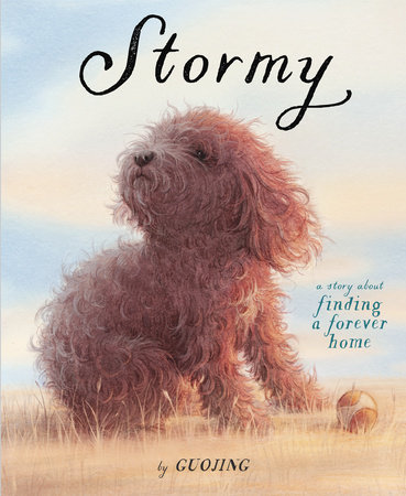 Cover image for Stormy