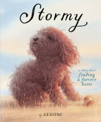 Cover of Stormy cover