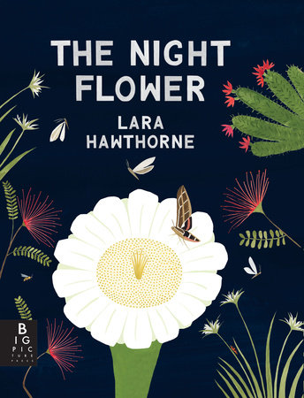 The Night Flower: The Blooming of the Saguaro Cactus