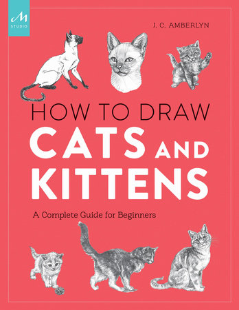How to Draw Cats and Kittens