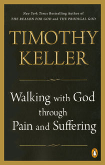 Excerpt from Walking with God through Pain and Suffering