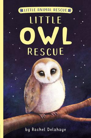 Little Owl Rescue