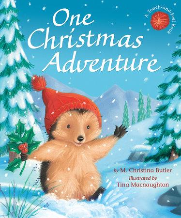 One Christmas Adventure