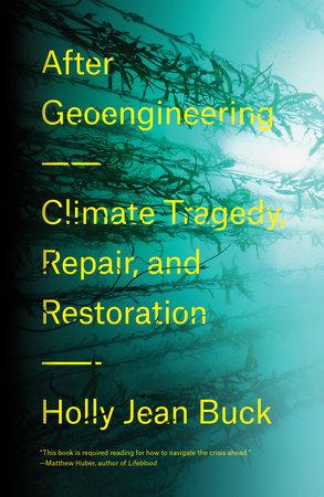 The World After Geoengineering