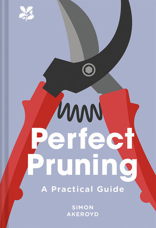 Perfect Pruning