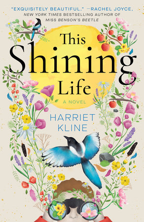 This Shining Life book cover