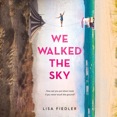 Cover image for We Walked the Sky