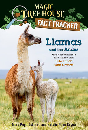 Llamas and the Andes